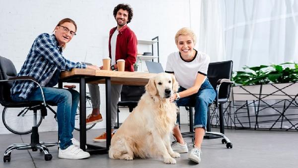Le start-up in una dimensione che coniuga innovazione e benessere degli animali domestici