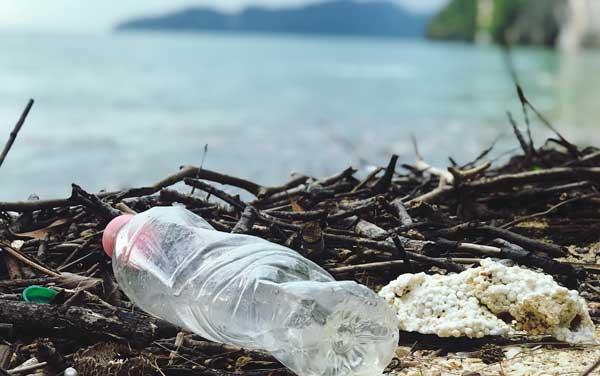 packaging sostenibile, responsabile, riusabile: i trend del 2021