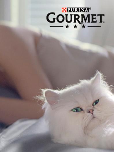 concept branding storytelling below the line Purina Gourmet